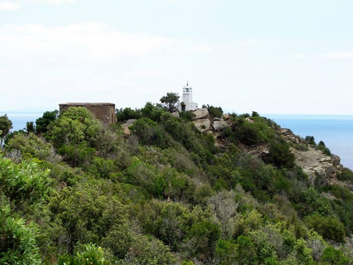 поход к маяку: вид с дороги