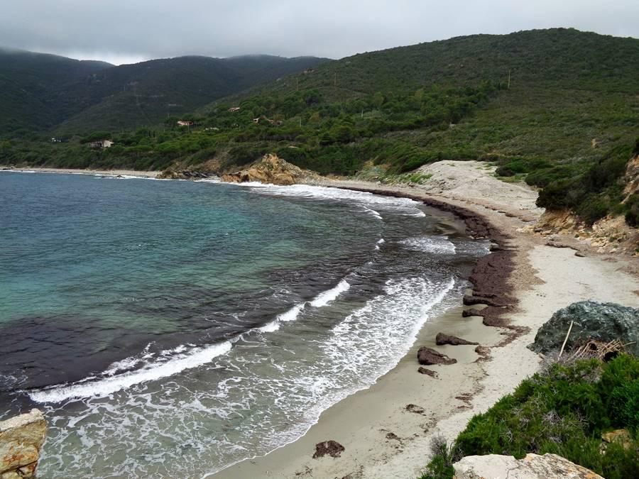 июнь на острове Эльба: вид на пляж Лаконелла