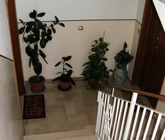 итальянский подъезд - цветы на этаже