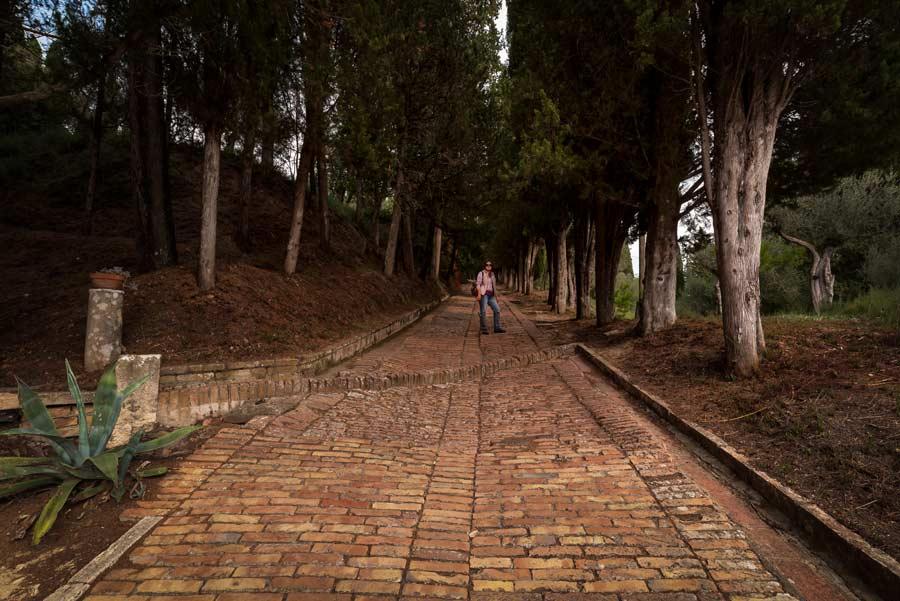 аббатство монте оливето - парк