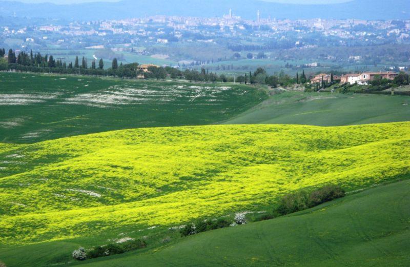 italiya-v-mae-италия-в-мае