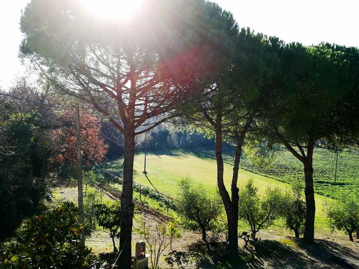 придомовая территория виллы в Италии