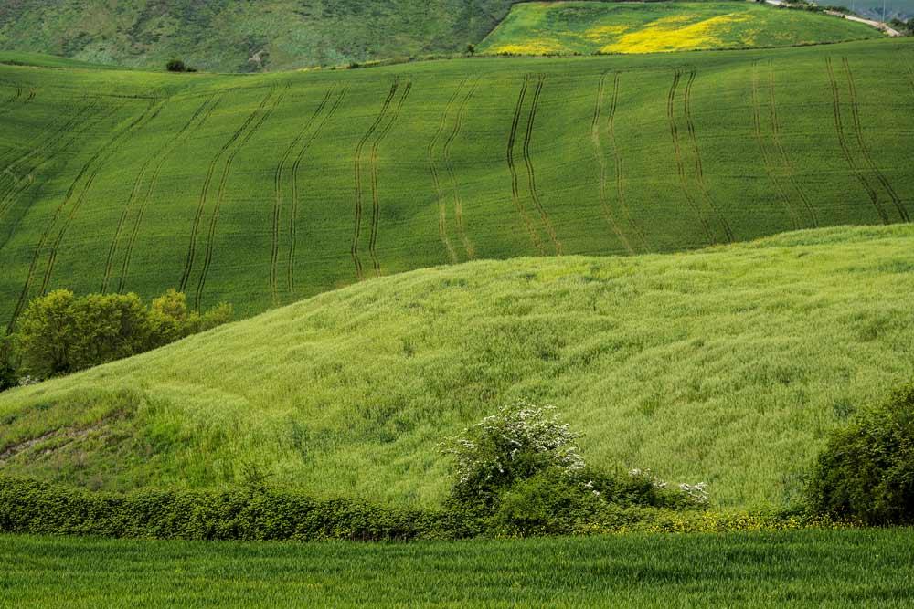сельские просторы в Тоскане
