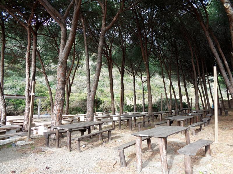 на пляже Ремаёло - столы под хвойными