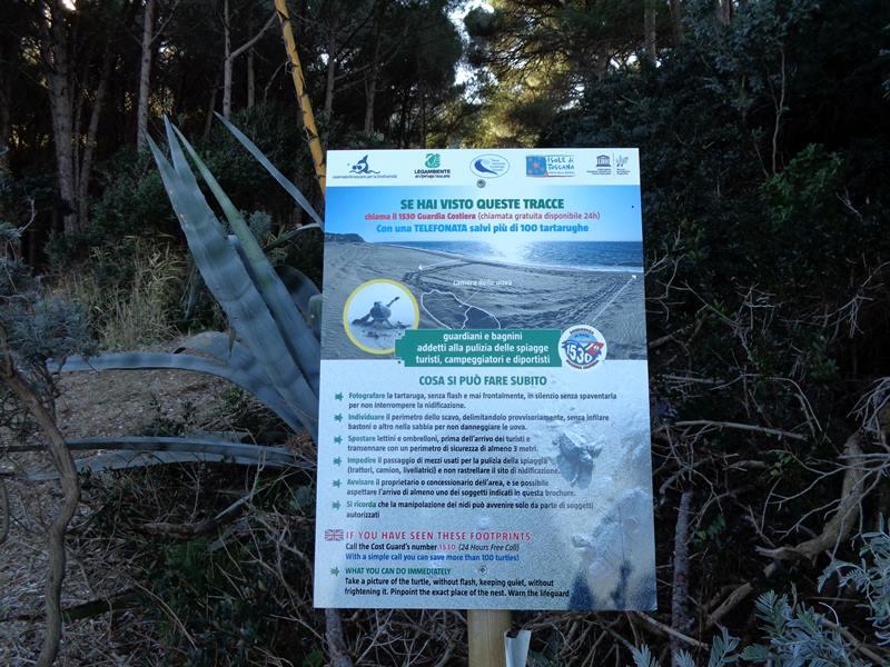 таблица о черепашьих путях на пляжах острова