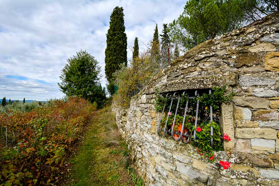 осенняяя прогулка, Ареццо