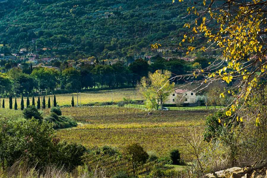 окрестности Ареццо в ноябре