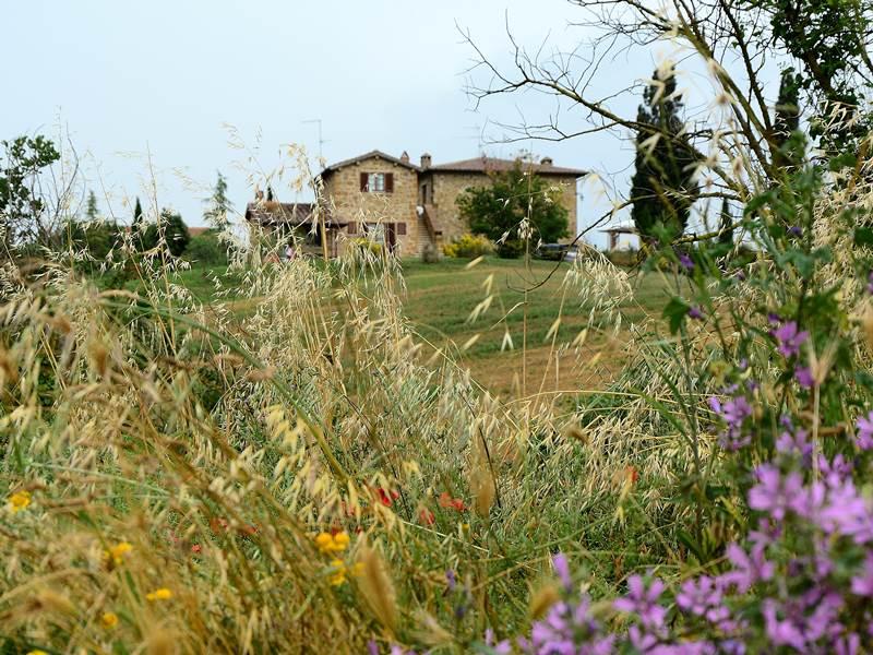 Тоскана в июне 2014 года
