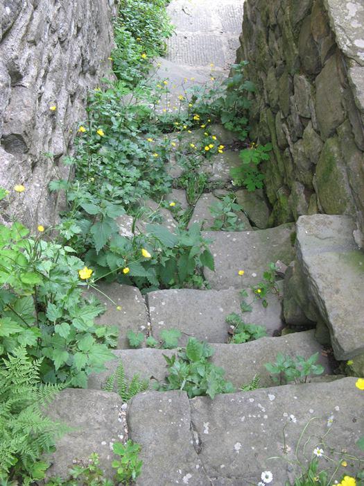 Рокка Ричарда лестница