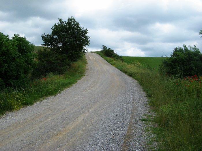 белая дорога в Тоскане