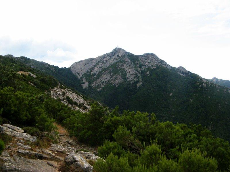 вид на гору Капанне на Эльбе в августе 2018 года
