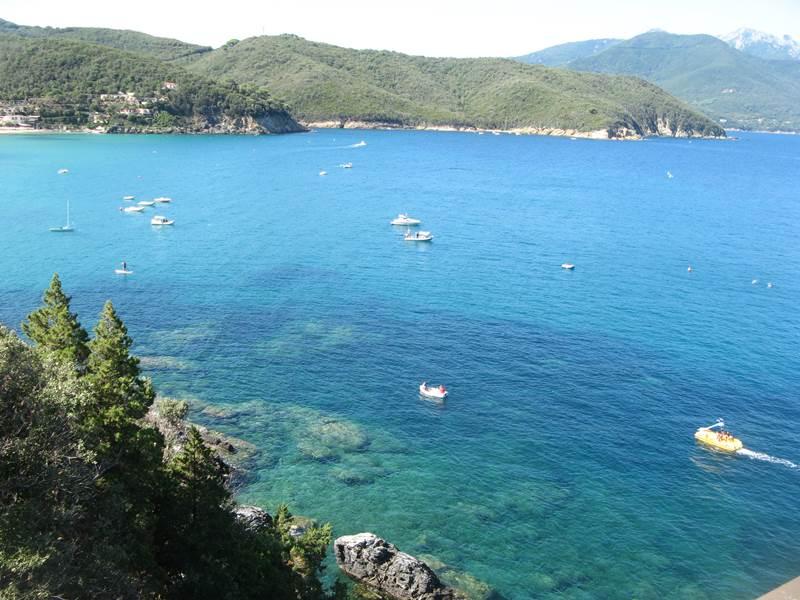 цвет Средиземного моря, Тоскана, Италия