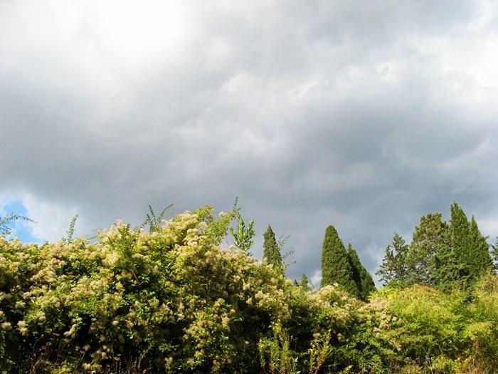 Тоскана в октябре - небо с тучами