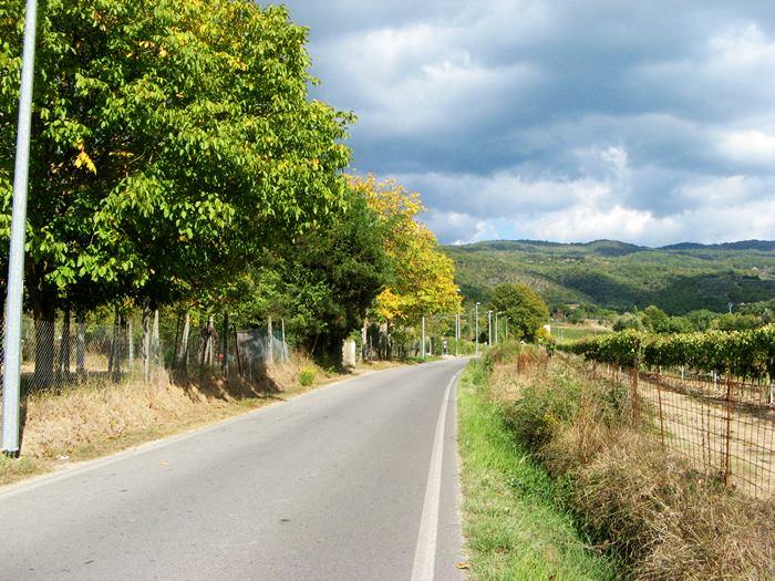 Тоскана в октябре - жёлтые листья