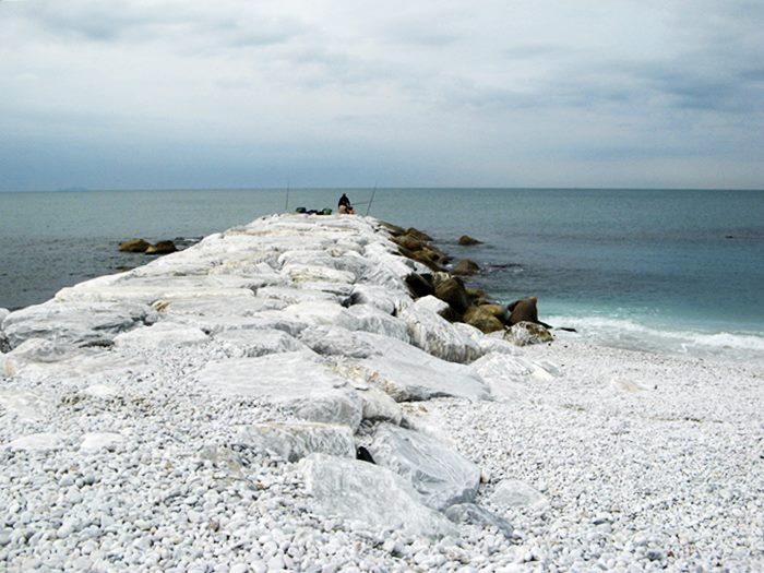ловля рыбы в Марина ди Пиза