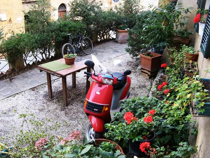 двор с растительностью в Петройо