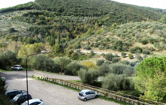 оливковые рощи возле Петройо
