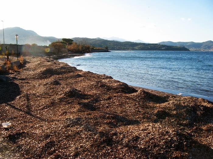 левая часть пляжа Магадзини
