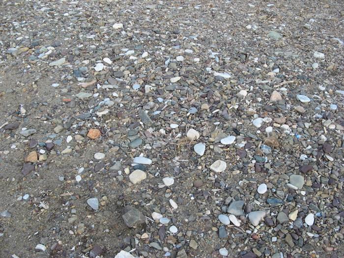 Пляж Баньяйа - камешки