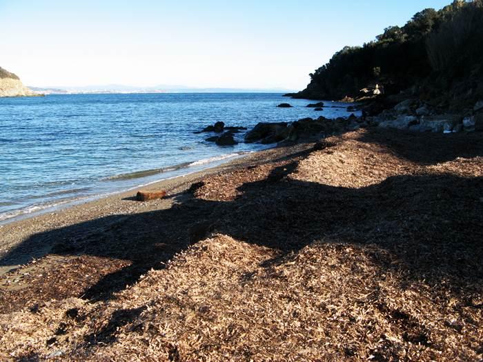 правая часть пляжа Фругозо