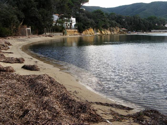 пляж Гвардиола - песок и водоросли