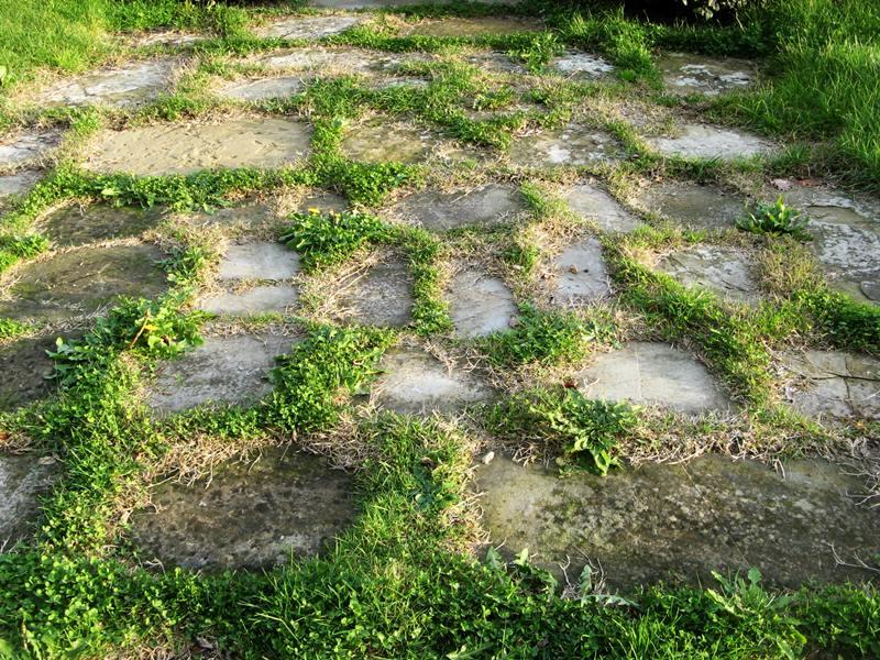трава возле замка Гальбино