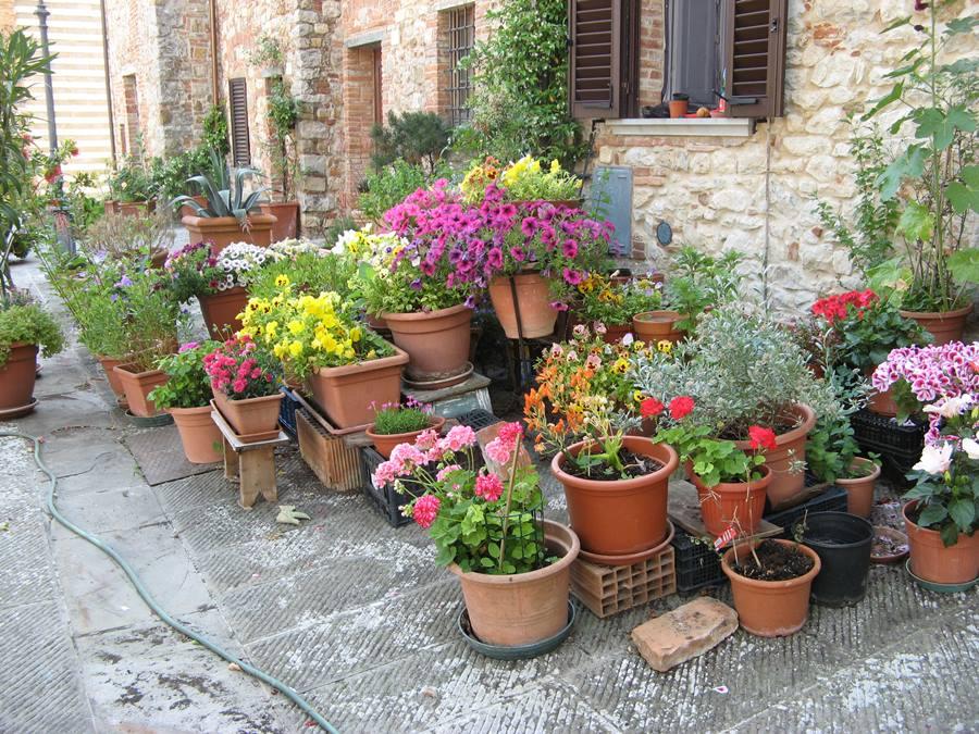 Самодельный садик в Лучиньяно