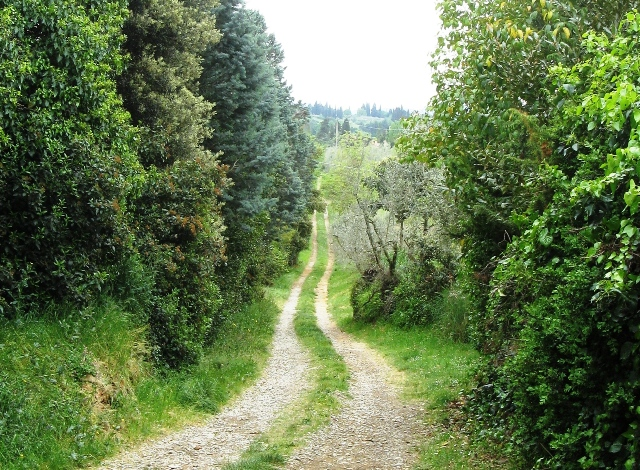 toskana-тоскана-сельская дорога