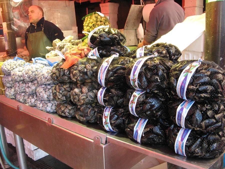 ракушки на рынке