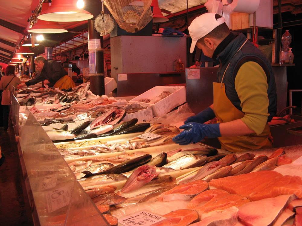 разнообразие рыбы