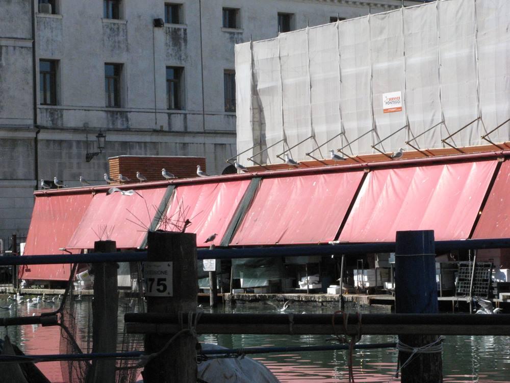 вид на рыбный рынок в Кьодже