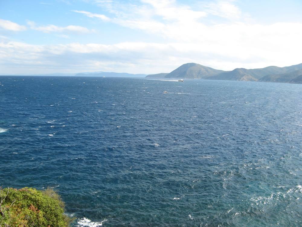 Вид на море из сада
