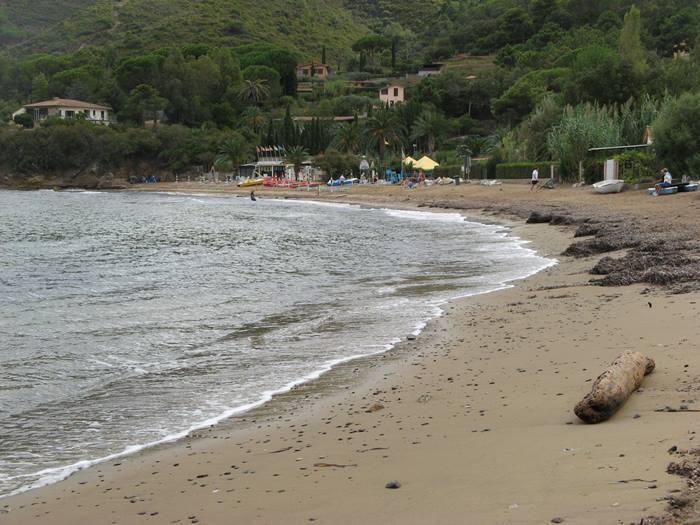 Стракколиньо: водоросли и бревно на пляже
