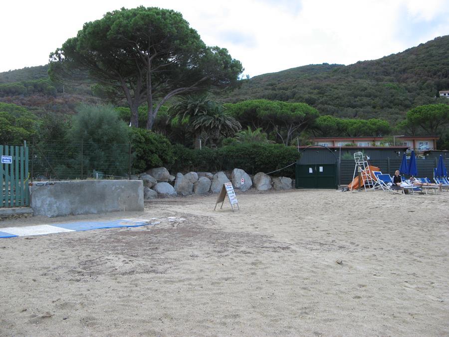 тыльная часть пляжа Спартая
