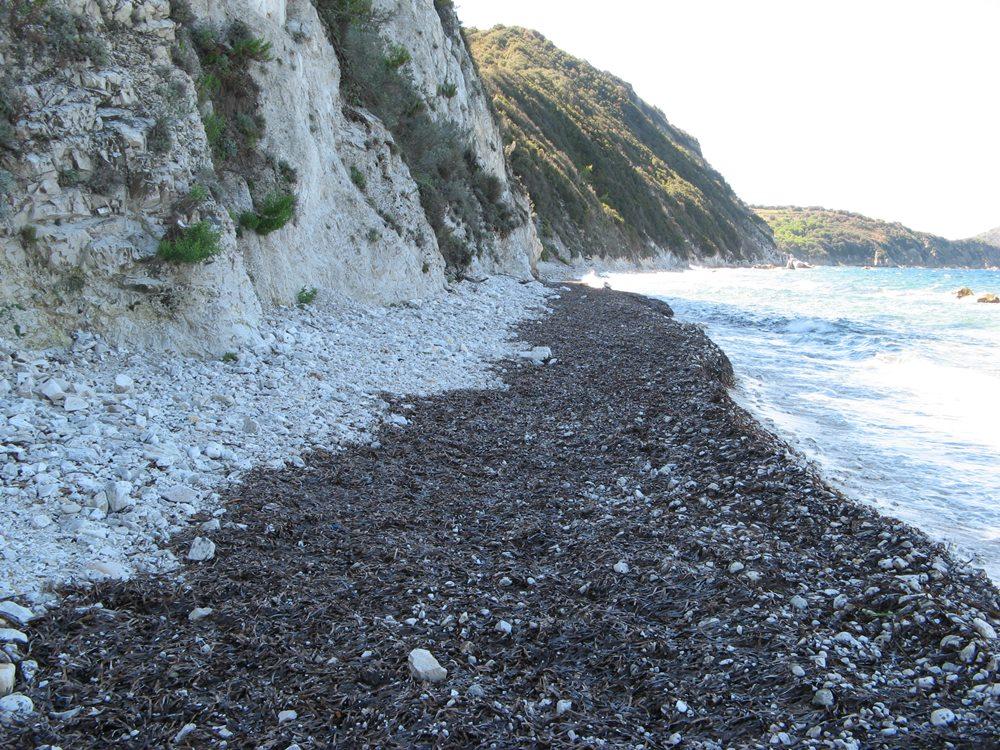 узкая часть на пляже