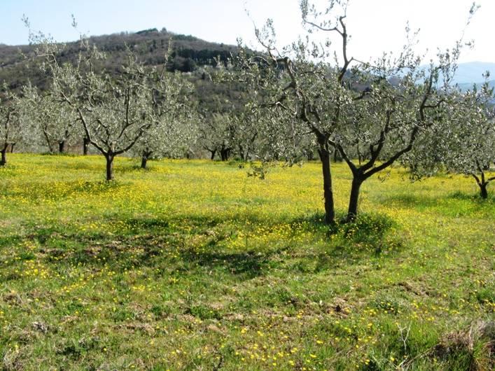 italia-v-aprele