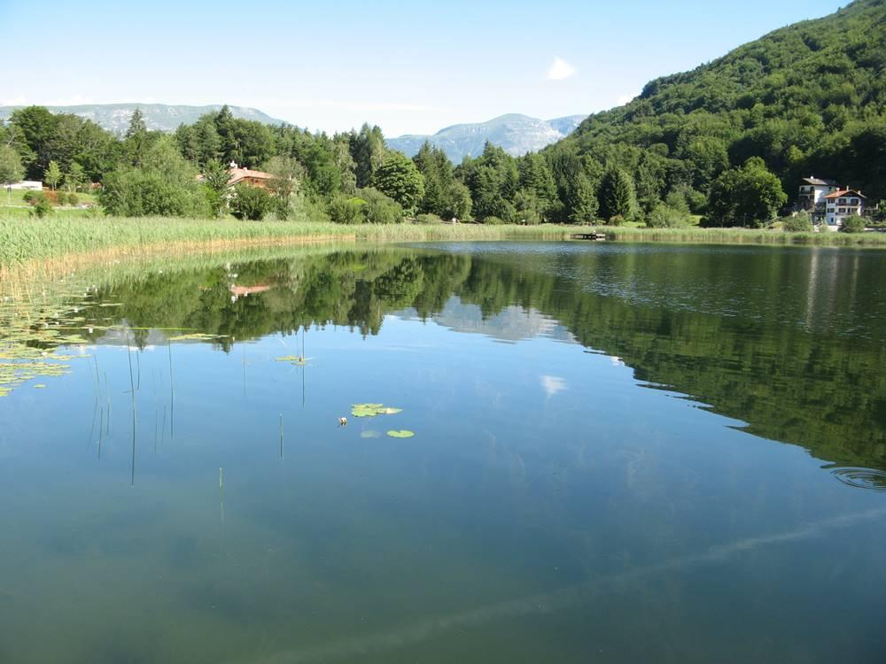 Левая часть озера