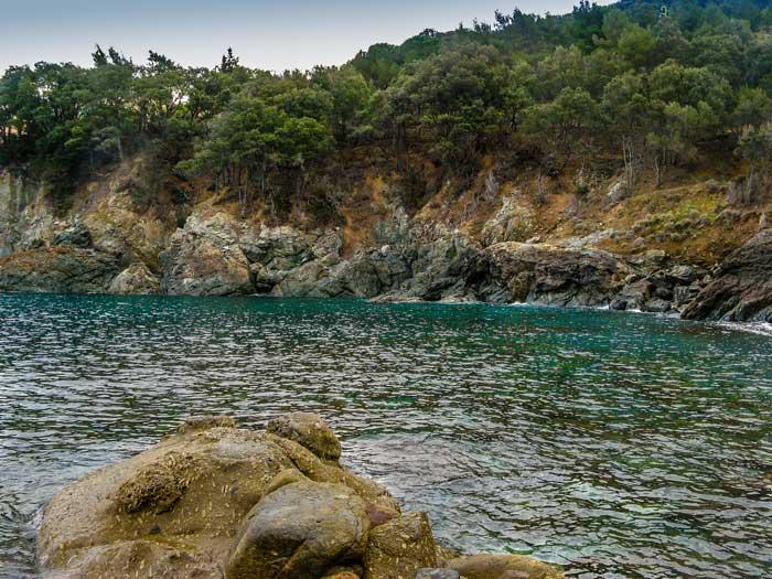 скалы, море, сосны