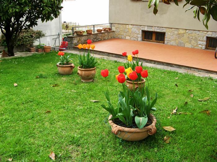 погодпа в апреле Италия - цветение тюльпанов
