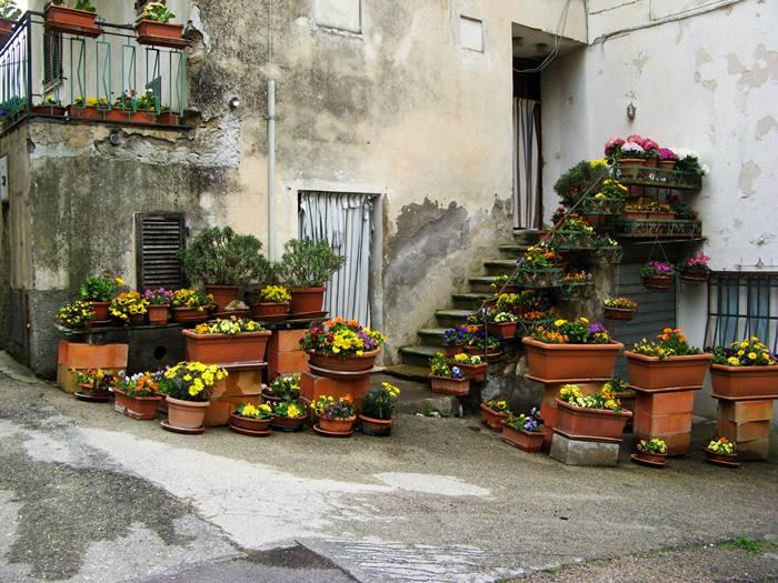Сан Савино Умбрия - цветы возле дома