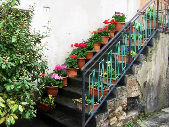 Сан Савино Умбрия - цветы на лестнице дома