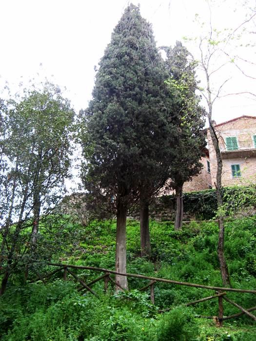 погода в апреле в Тоскане