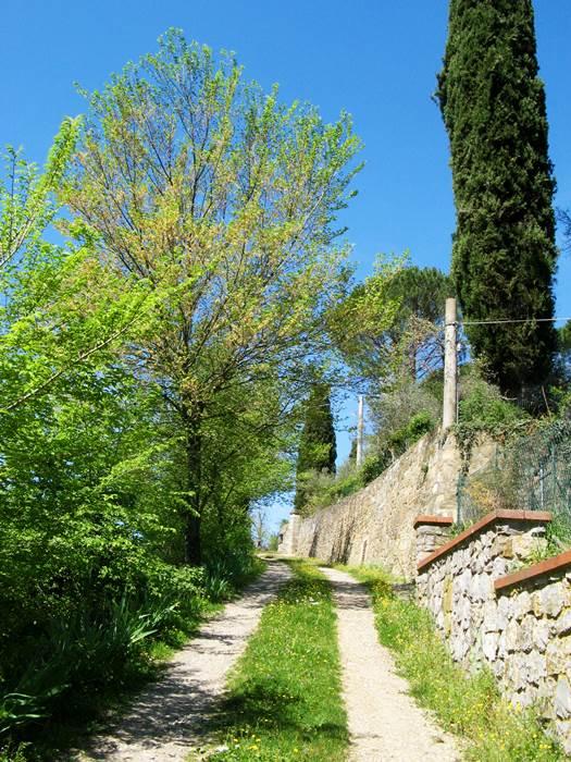просёлочная дорога в Тоскане