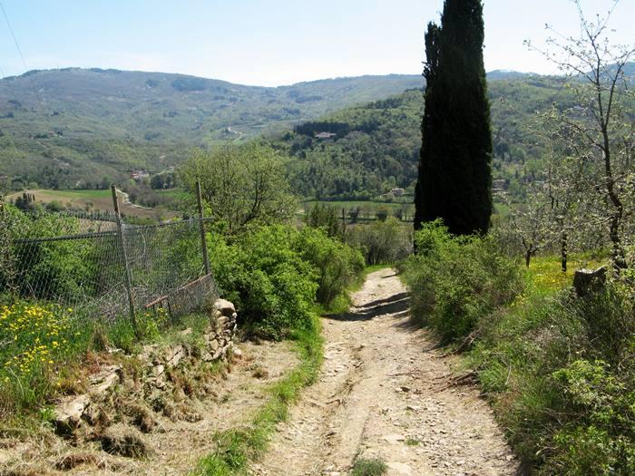 весна в Тоскане - сельская дорога