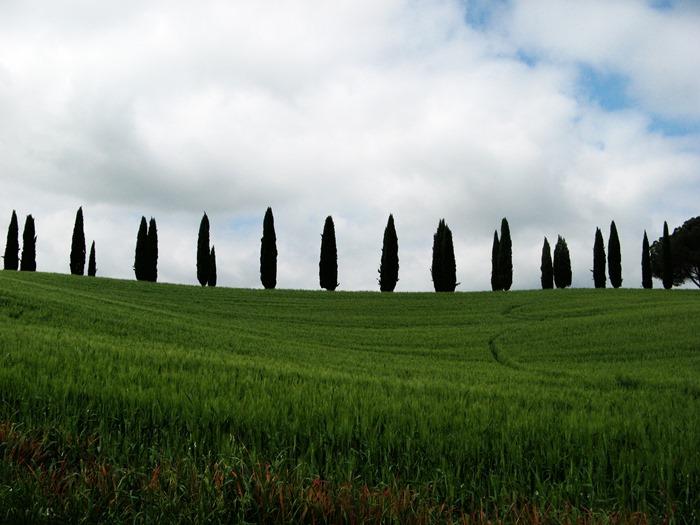 Тоскана в мае