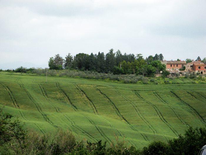 Тоскана в мае 2018