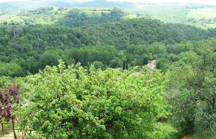 Вид из Кастельмунцио